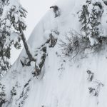 Matt Wainhouse over the twigs. Photo: Brad Andrew.