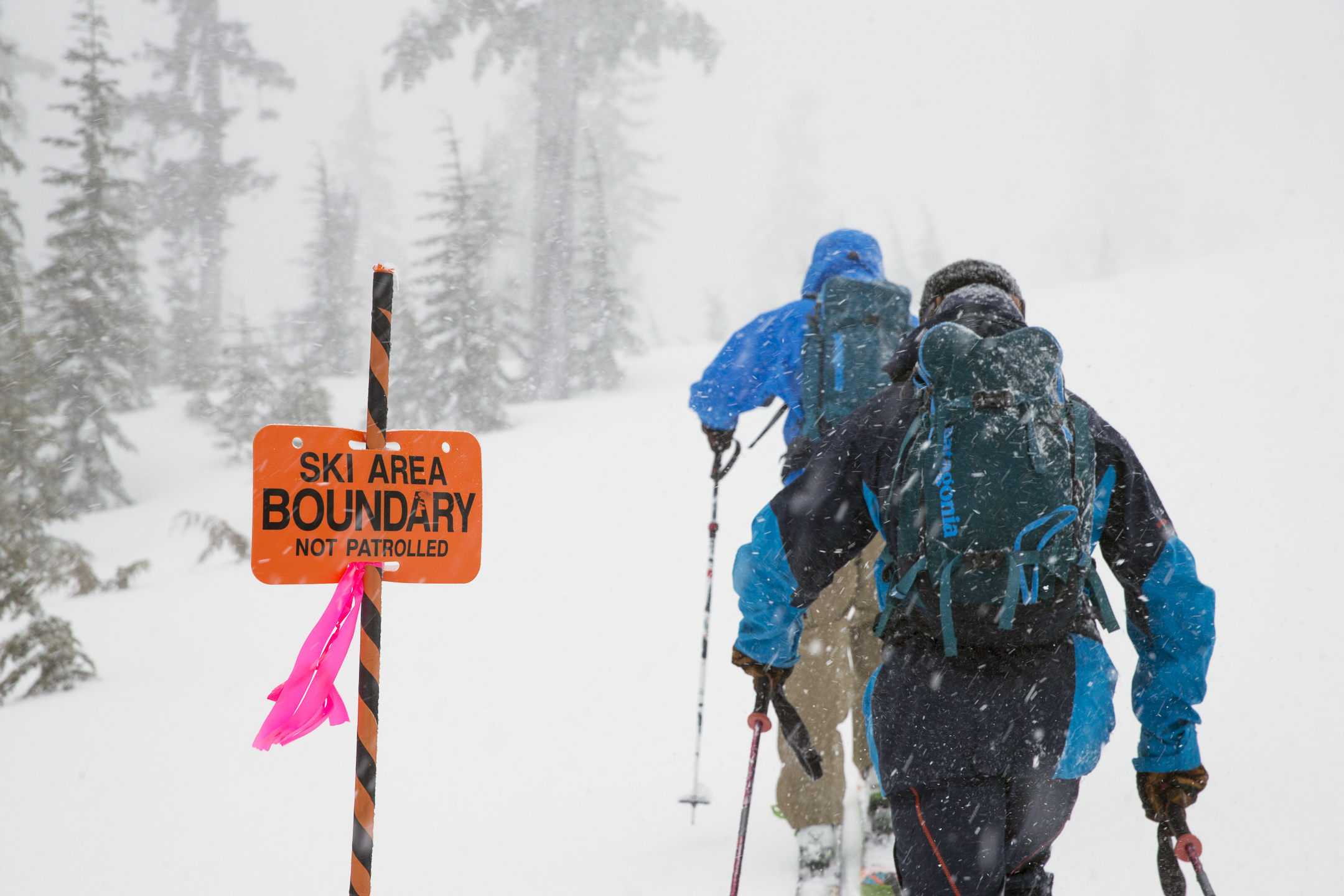 Eliel Hindert Mt Cain Alpine Park Vancouver Island, British Columbia www.jaybeyer.com jay@jaybeyer.com 801-891-0838