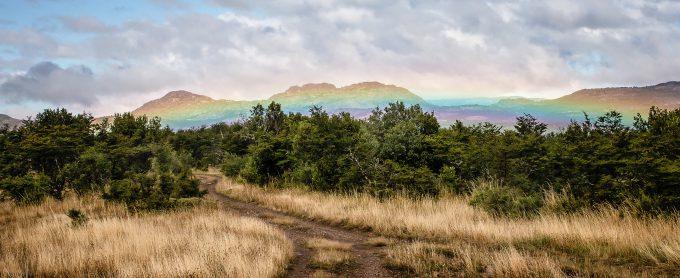 Patagonia rainbows.