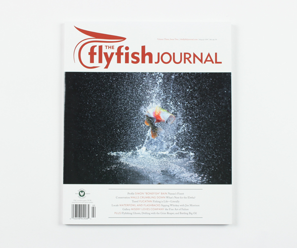tffj-store-backissue-3-2
