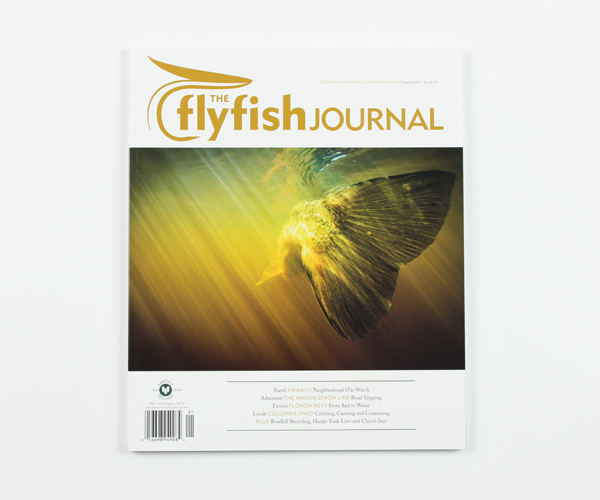 tffj-store-backissue-4-1