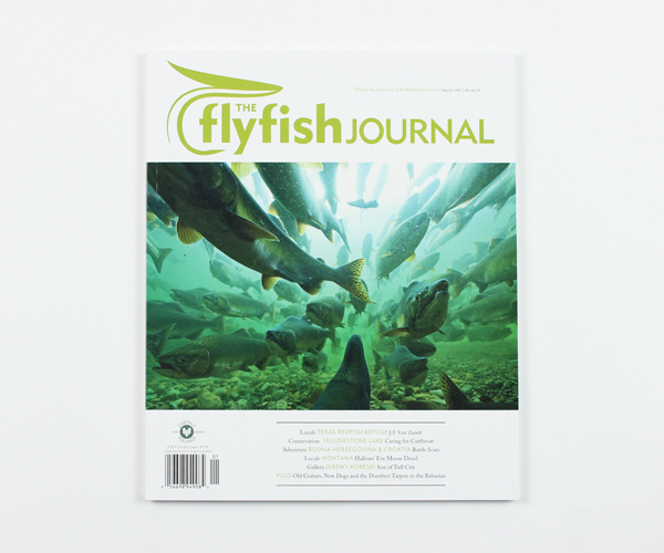 tffj-store-backissue-6-1