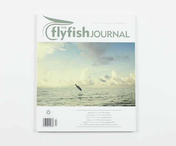 tffj-store-backissue-6-4