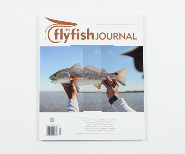 tffj-store-backissue-7-3