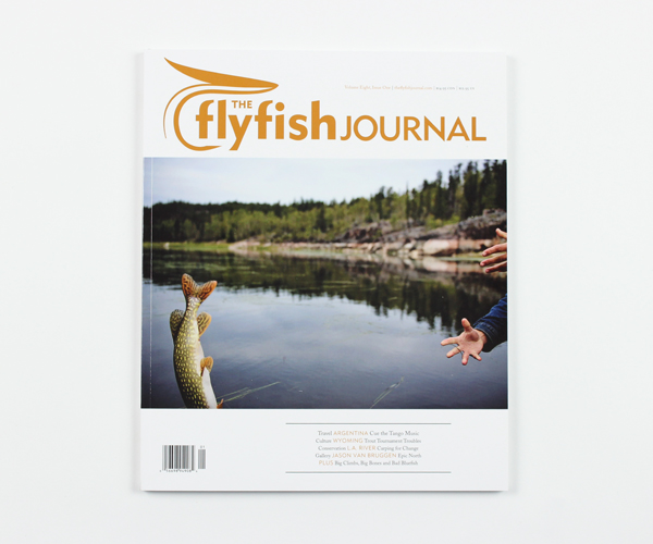 tffj-store-backissue-8-1