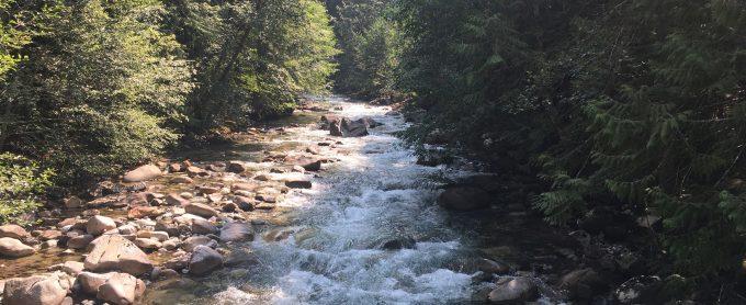 water, clean water, headwaters, stream, clean water rule