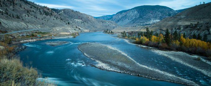Thompson River Wild Steelhead