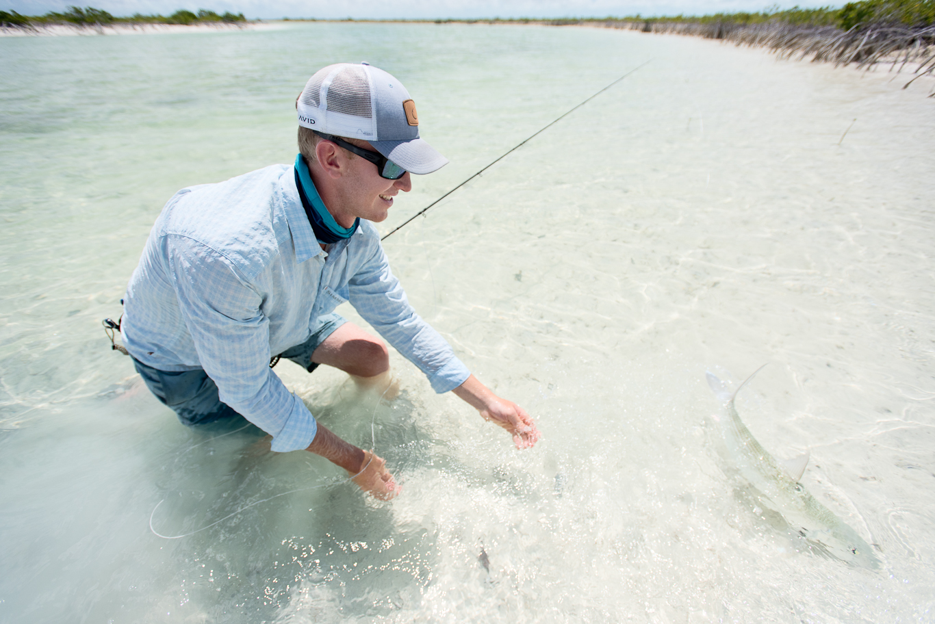 Bahamas, South Andros, Flyfishing, Bonefish