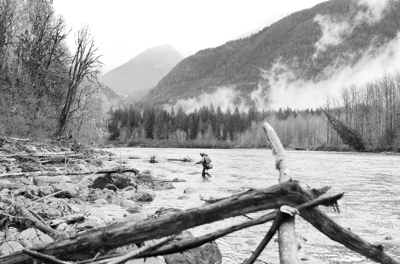 steelhead, flyfishing, pacific northwest, washington state